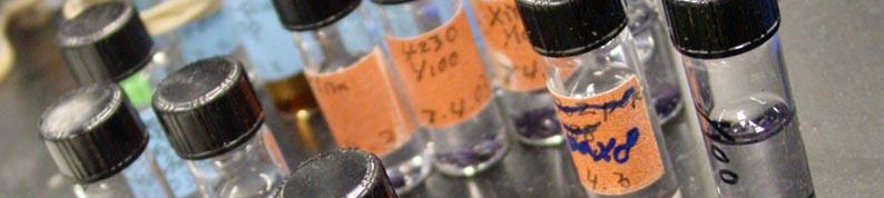 Department of Biological Sciences -